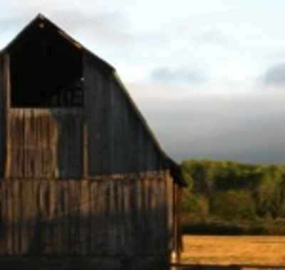 Barn_in_the_sun